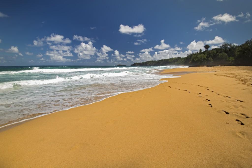 Secret Beach Or Kauapea Beach, North Shore, Kauai, Hawaii. Looking Towards Kilauea Lighthouse