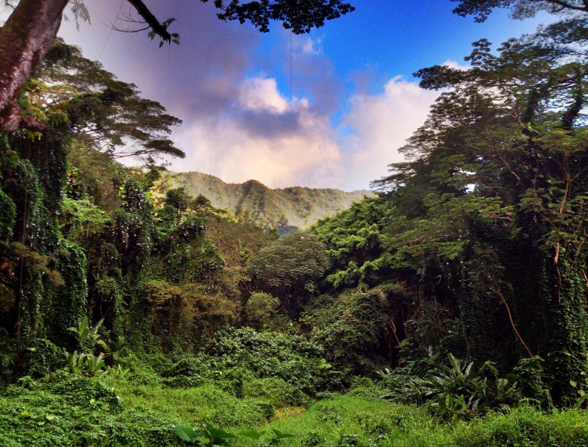 best hikes hawaii magazine 2016