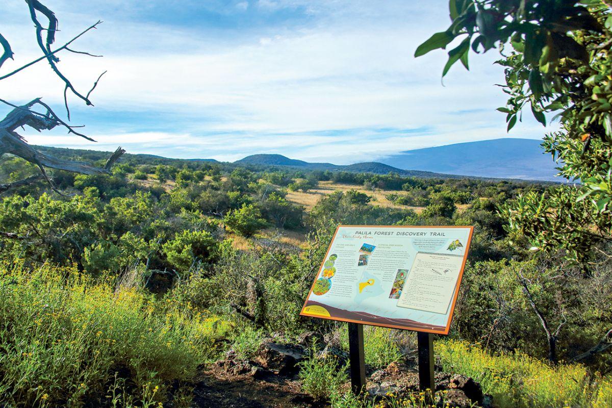 coast-to-coast birding trail