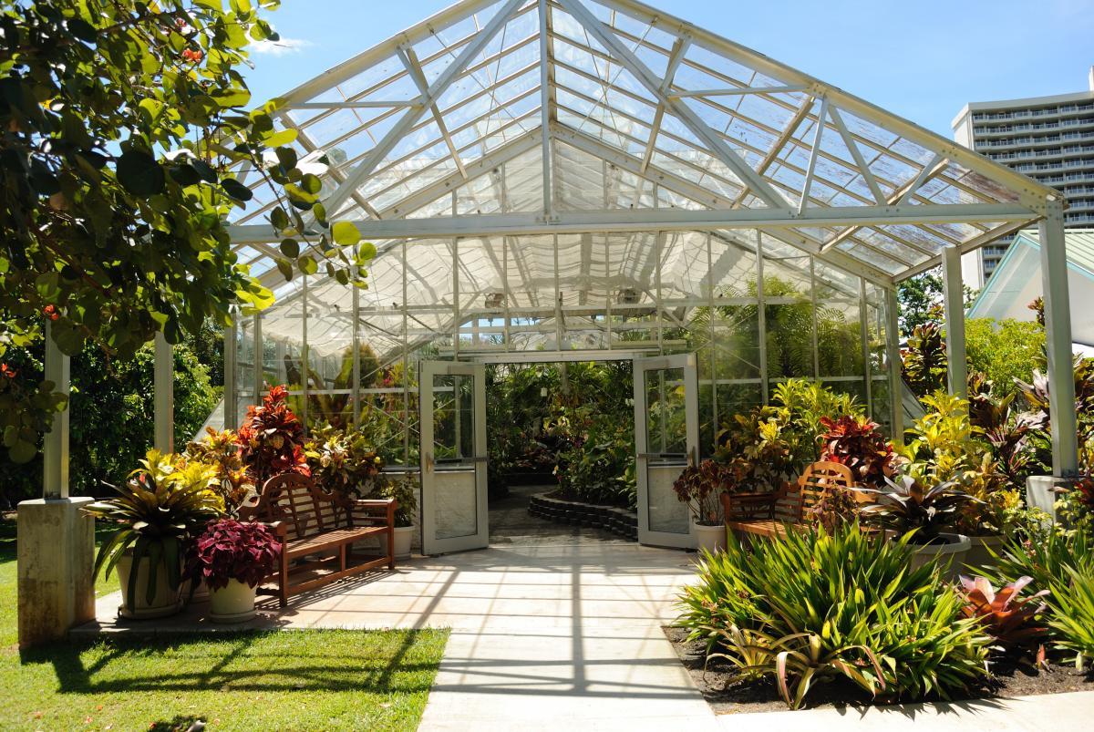 foster botanical gardens oahu