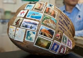 Hawaii_mailing_a_coconut