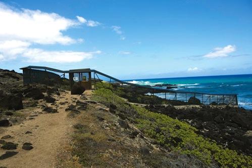 Kaena_Point_hike_Oahu