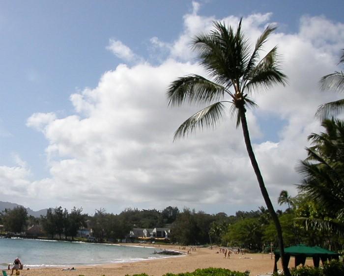 Hawaii_best_beaches_for_bodysurfing