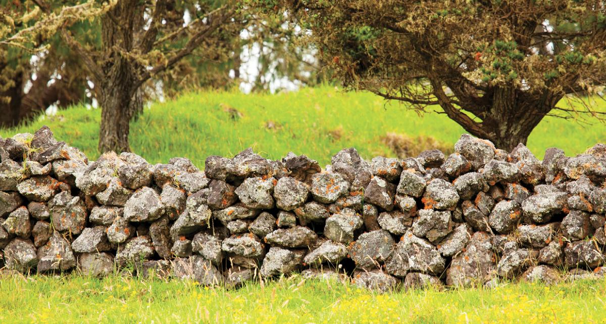rock wall mana road