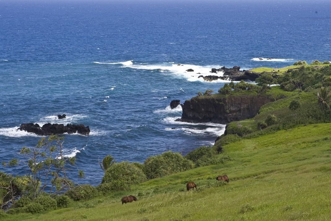 best_of_Hawaii_favorite_road_trips