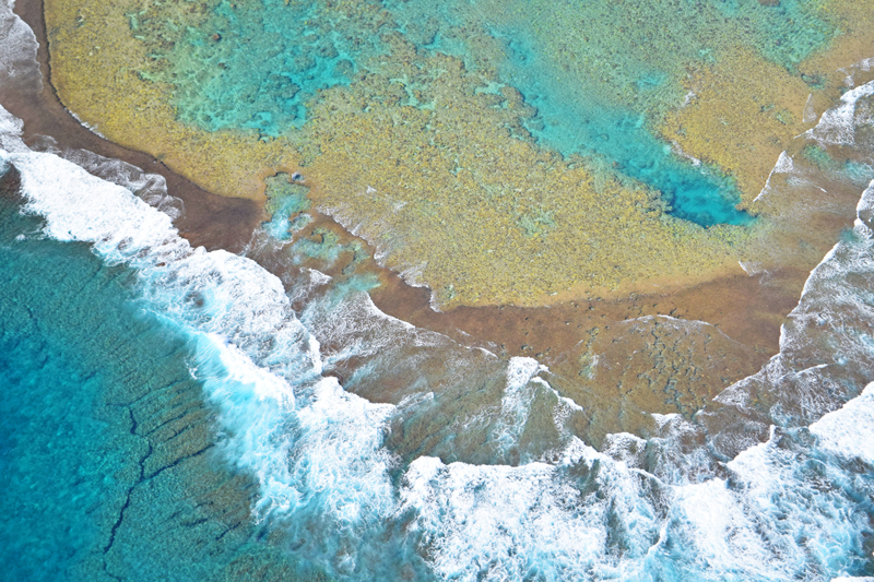 kauai reef photo contest
