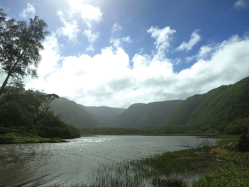 Pololu_Valley_Big_Island