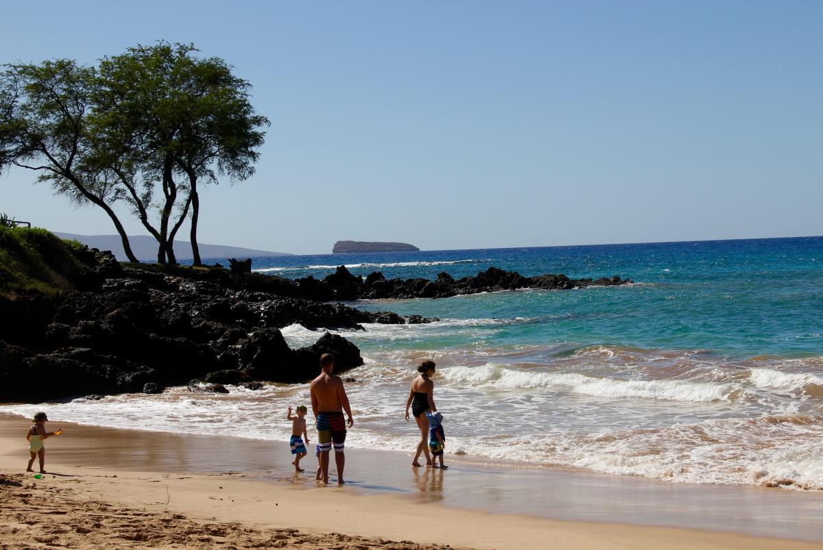 maui turtle beach