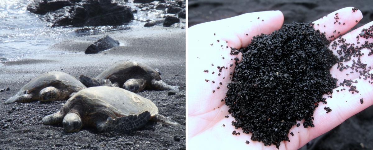 black-sand-beach-hawaii-punaluu