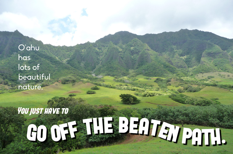 first time hawaii travel advice