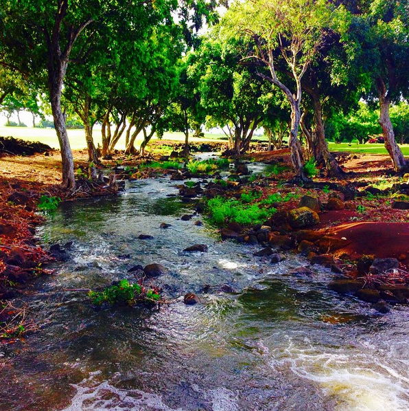 waikomo stream kauai