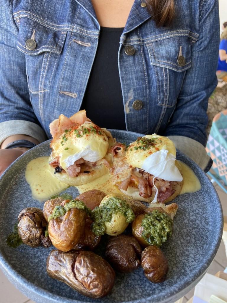 Hautree Eggs2