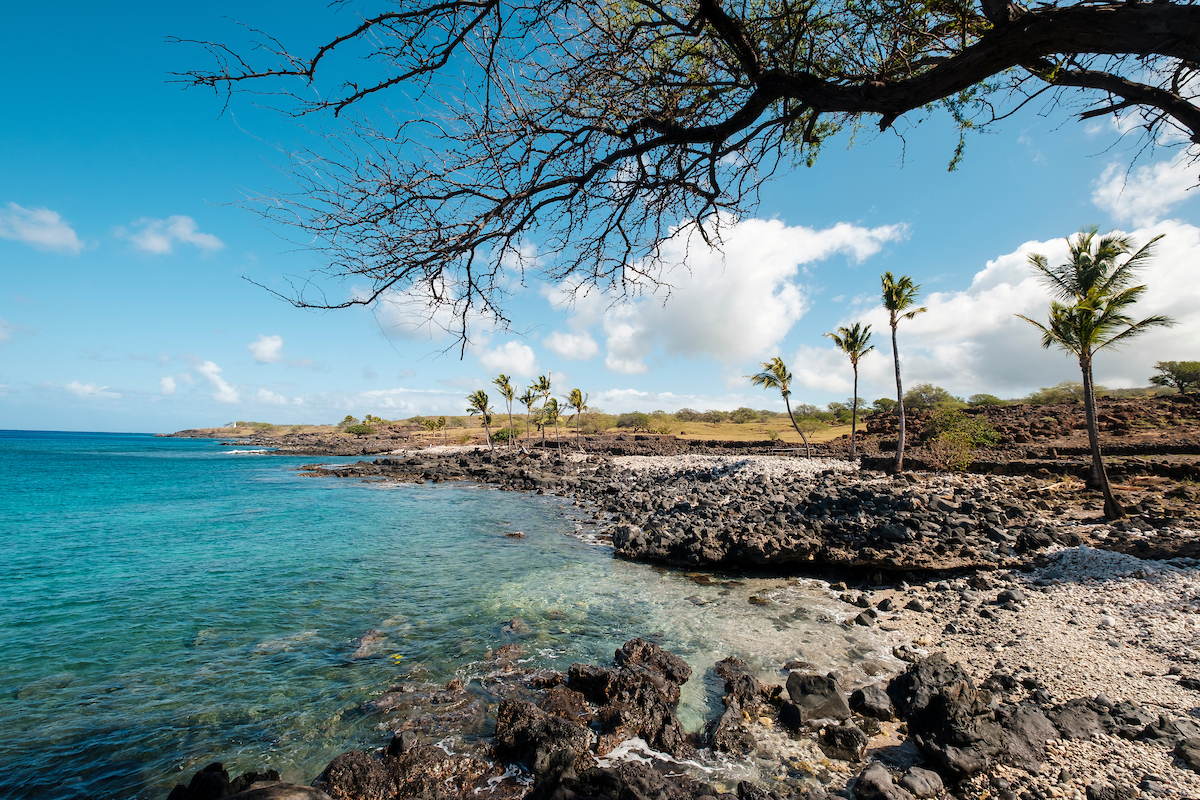 Him2005 Ay Hawaii Island 8104