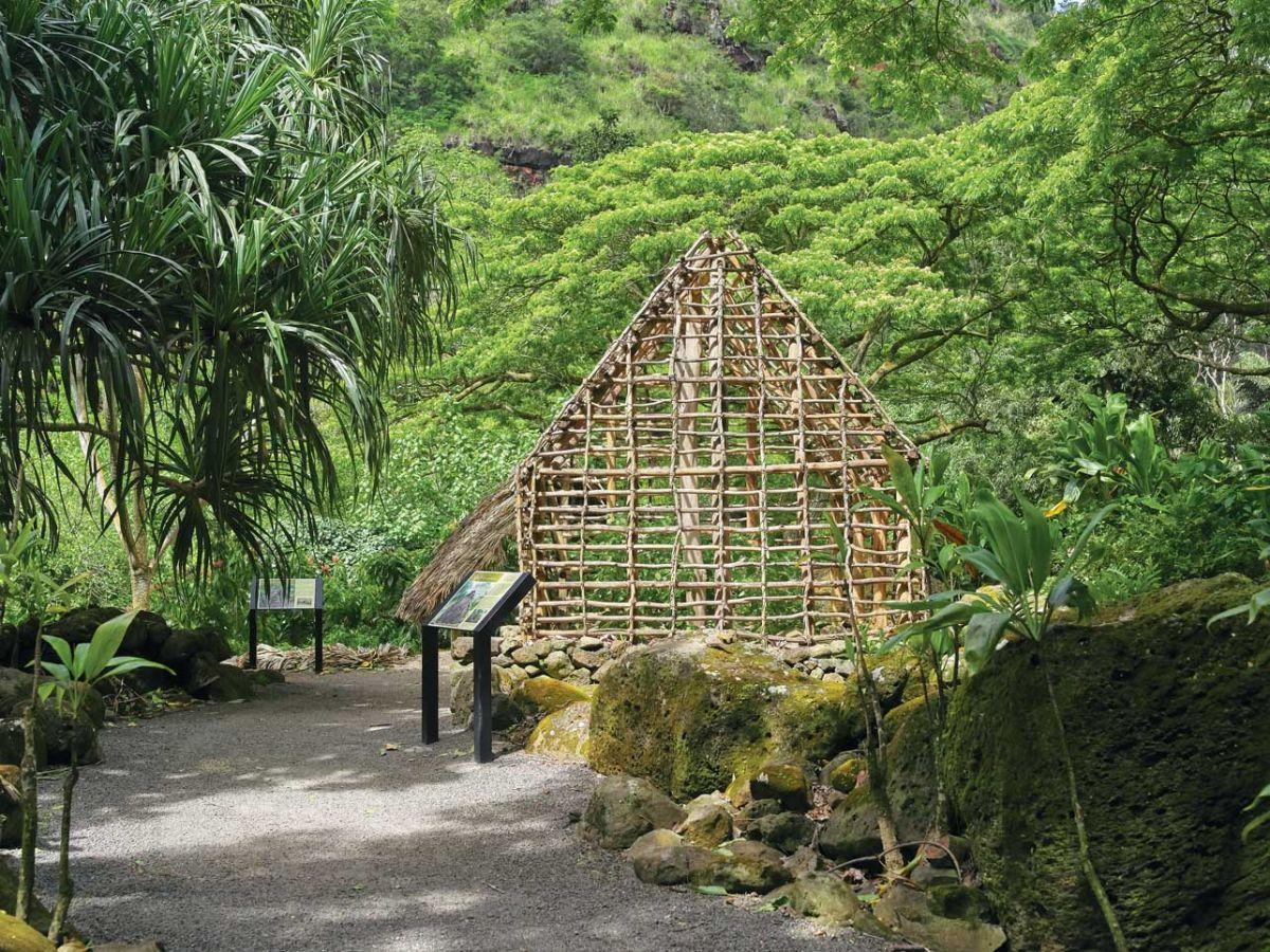 Oahu Waimea4