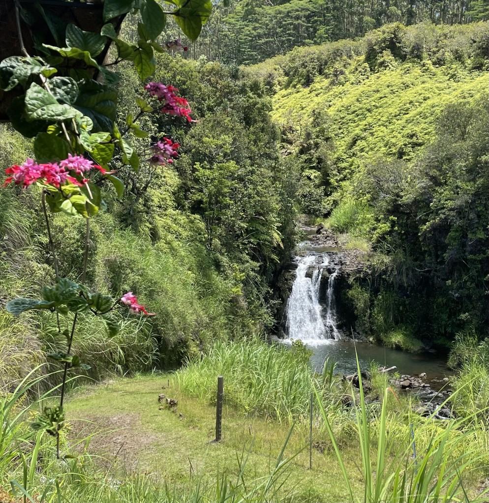 Lavaloha Waterfall 1