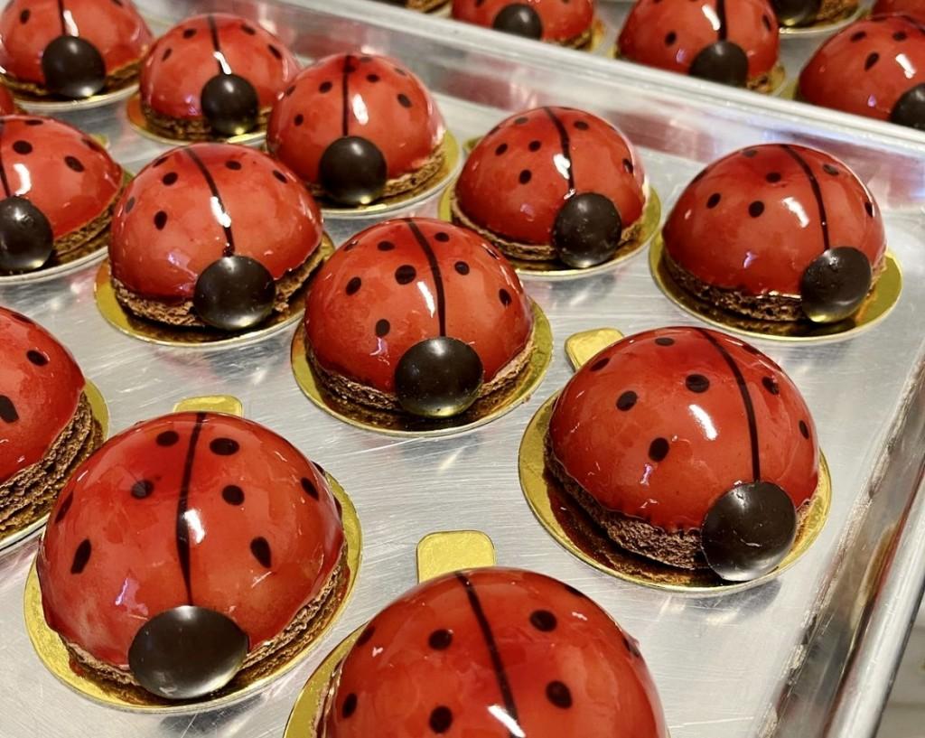 Raspberry ladybug